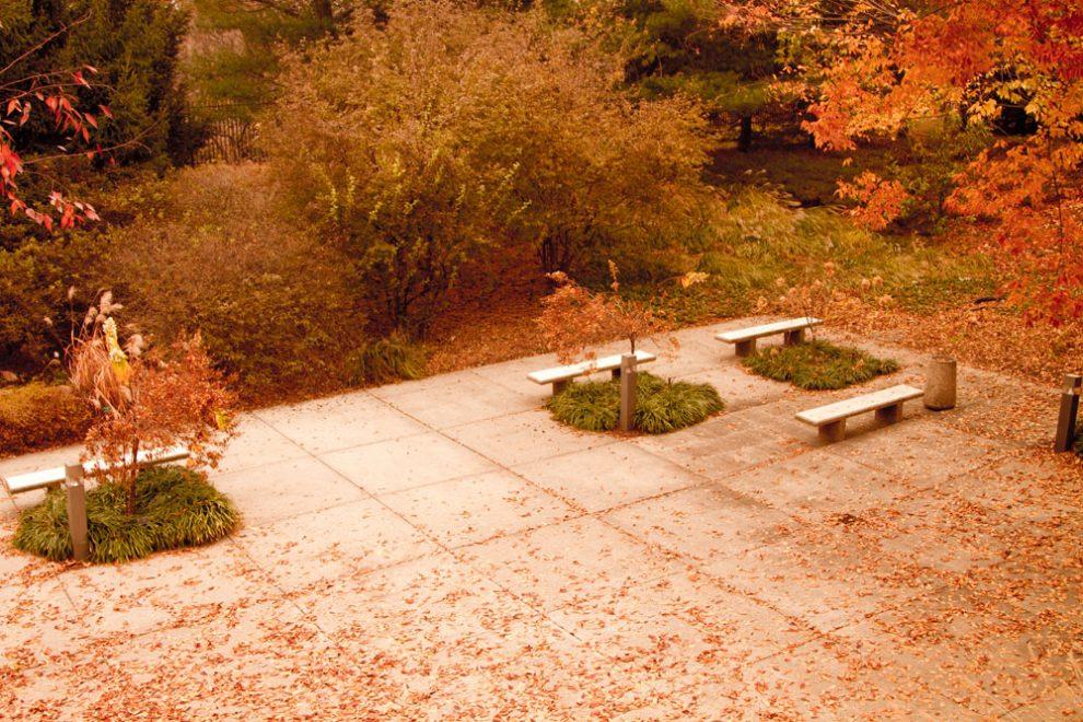 Autumn/Fall near the University Club