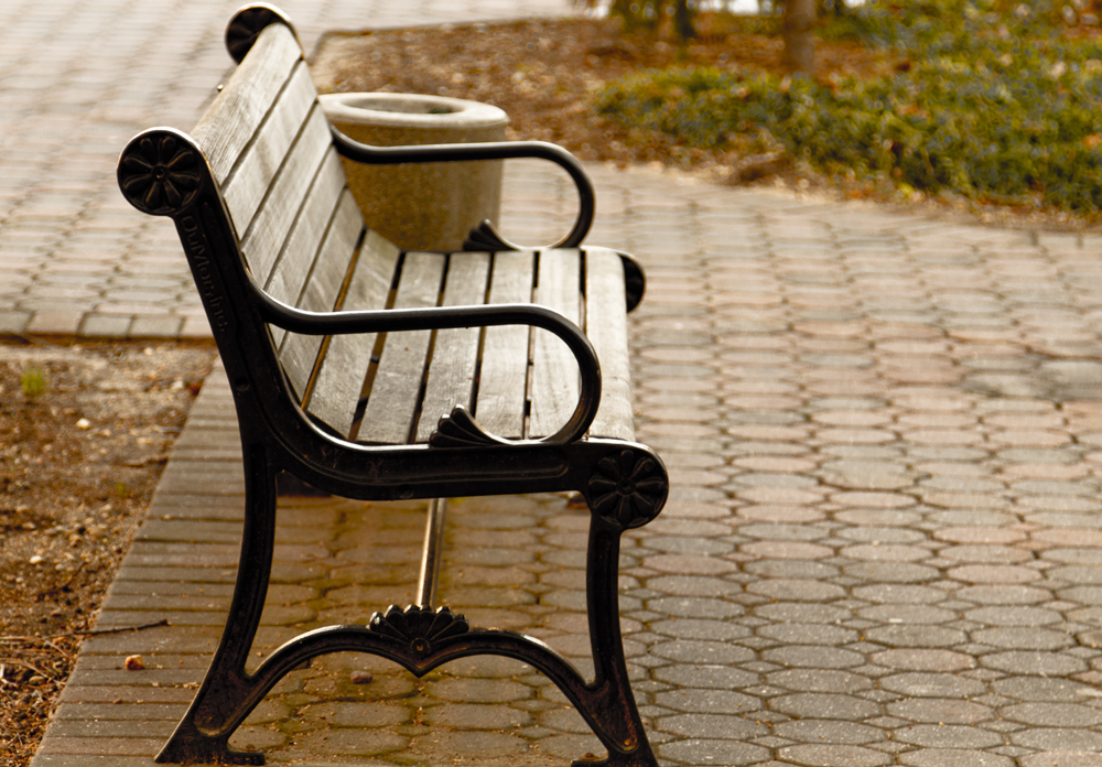 An empty bench on the Hofstra campus.